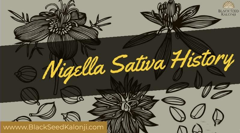 Black Seed Kalonji Nigella Sativa History